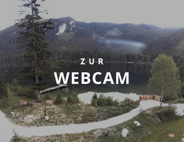 Einblicke über die Webcam der Kohlröserlhütte am Ödensee.